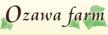 通販 産地直送 高級ぶどうの ozawa farm