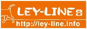 LEY-LINE レイライン 保護犬の里親募集