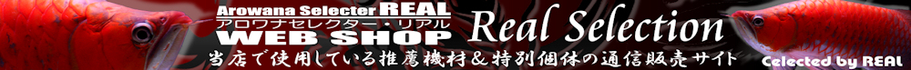 ArowanaSelector REAL WEB SHOP