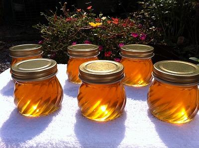 """*百花蜜の性質<br /> 西洋蜜蜂の蜂蜜は透明ですが、日本蜜蜂の蜂蜜は""""琥珀色""""をしております。西洋蜜蜂では、蜂が花蜜を集めた後に短期間に採蜜するためです。<br /> 一方、日本蜜蜂は時間を掛けて巣作りし、花粉(幼虫の蛋白源)を貯めた巣にも蜜をためるため、その色が蜜に含まれ、""""琥珀色""""となります。決して不純物によるものではありません。<br /> 日本蜜蜂の蜂蜜は個性ある風味を保持させるために""""生""""です。西洋蜜蜂の蜂蜜(一部)のように加熱処理は全くしません。そのため、保存期間中に表面に白い泡・固形物が観察される事があります。これは蜂蜜の成分(ショ糖=果糖+ブドウ糖)が分解してブドウ糖が析出するためで、食するには全く問題がありません。このような現象は、蜂が樹木の花よりも草花の花蜜を集める飼育環境下では良くみられます。気になるようでしたら、湯煎あるいは電子レンジで2-3分チンすれば消失します。また蜂蜜が固形化した場合も同様にすれば液化します。<br /><br />*蜂蜜の作り方<br />西洋蜜蜂の飼育では蜜が詰まった人工巣を遠心分離機で回し、機械的に採蜜します。 一方、日本蜜蜂の蜜は、蜂が作った貯蜜圏巣(蜜を蓄えた部分)を細かく砕き、ステンレスのザルに乗せ、時間を掛けて自然に蜜を垂らします。その後、細かい巣のかけらを""""さらし""""などで数回ろ過して除きます。このような自然の方法で蜜を精製するため、日本蜜蜂の蜜は""""垂れ蜜""""と呼ばれています。このようなステップをふむ事により、蜂蜜の成分としては、蜜、ビタミン、ミネラル、アミノ酸、抗酸化物、有機酸および巣の成分(高級脂肪アルコールなど)を含み、胃、肝臓などに効能があり、また精力剤として良いとされております。<br />"""