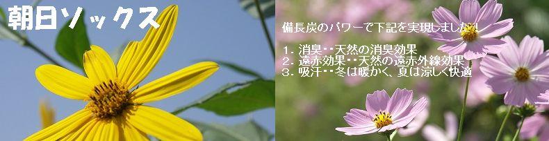 有限会社 朝日ソックス