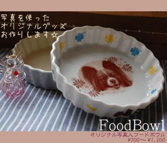 フードボウル(別注・小)・白リニューアルバージョン