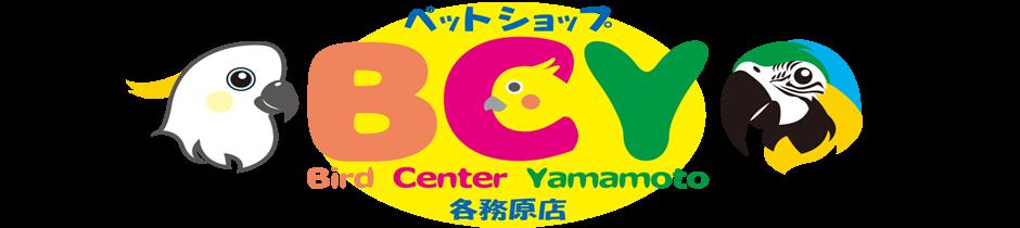 BCY 各務原店