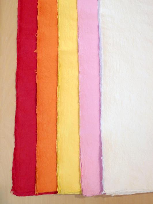 左から赤・オレンジ・黄・ピンク・白