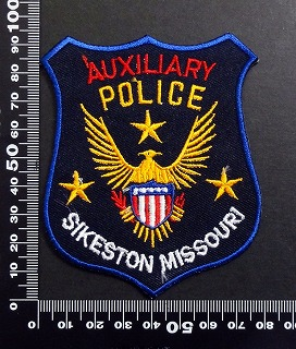 警察 ポリス POLICE ワッペン パッチ  05980