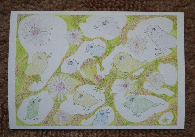 かわいらしい小鳥の、絵はがき、11枚セット。ケース入り。<div>プレゼントに、いかがですか、</div><div>きっと喜ばれると、思います。</div><div>クレジットカード決済が、できるようになりました。</div><div><br></div>