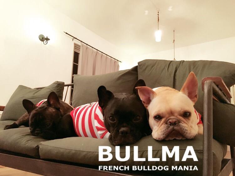 bullma