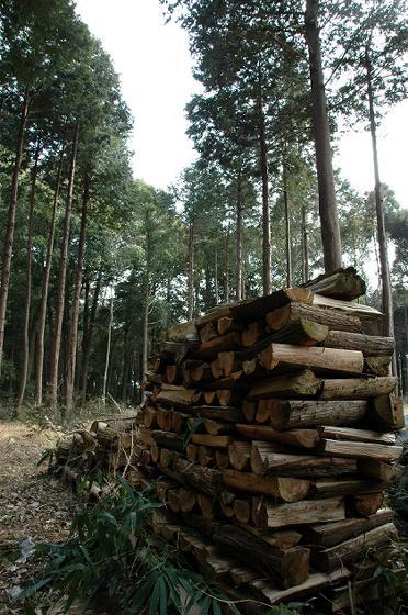 杉やヒノキやサワラなどの針葉樹の薪です。火がつきやすくキャンプや焚き火にも最適です。