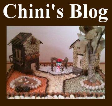 チニーズブログ