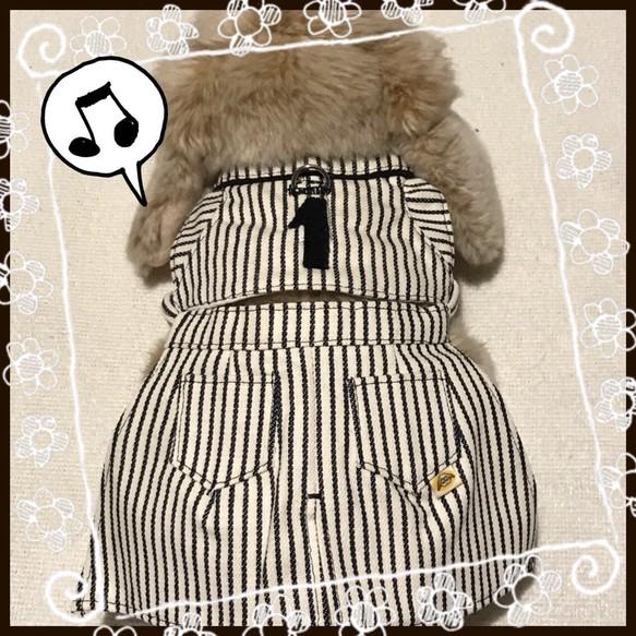 ハーネスにスカートをセットした、しのりんオリジナルのセットアップ商品です。ハーネスのみでも使用できます。おしゃれしたい時はスカートを装着すればいろいろな着こなしができます。