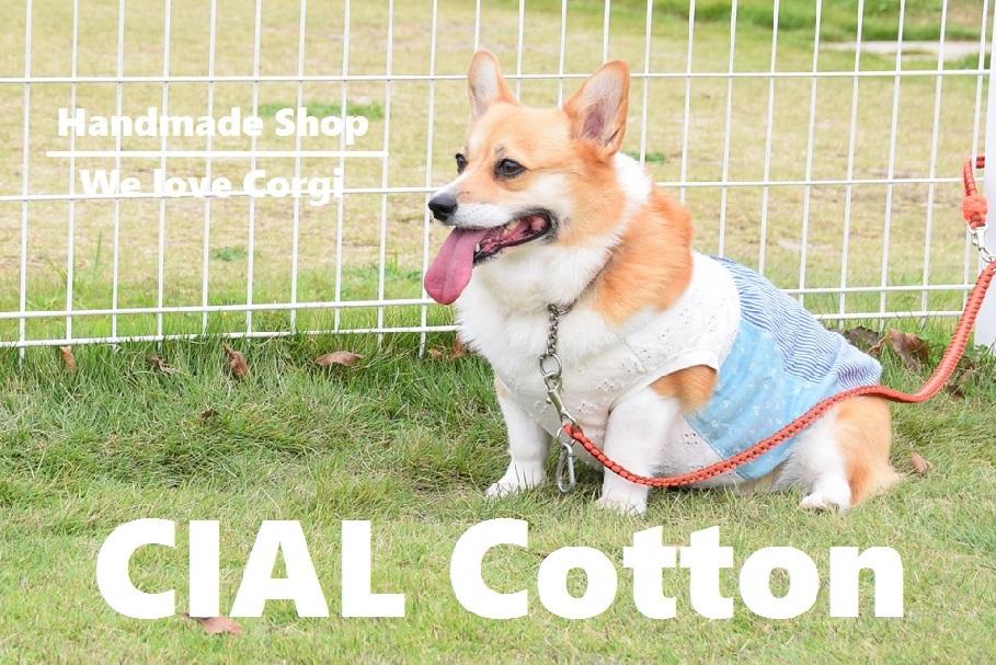 CIAL Cotton