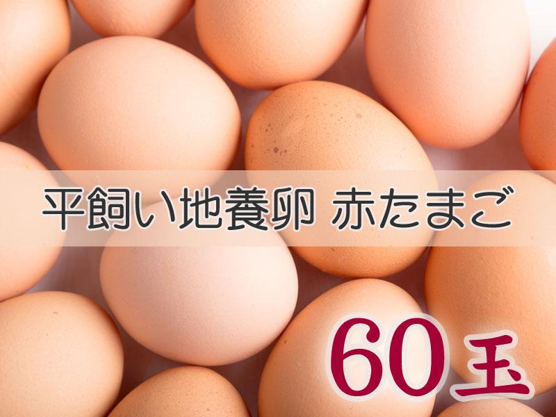 <p>【商品名】&nbsp;たまごづくし 平飼い地養卵赤たまご 60個</p><p>【品番】&nbsp;B-③</p><p>【商品内容】平飼い地養卵赤たまご 60個</p><p><br></p><p>普段使い、贈答用に</p><p>『スーパーなどで売られている卵と比べたら高価ですが、食べたらわかります!!』</p><p><br>  広々とした鶏舎の中を鶏が自由に走り回り、ストレスを与えず自然豊かな環境でのびのびと飼育され、ミネラル豊富な地要素のエサを食べて健康で活力のある鶏が産んだ、甘みとコクのある最高の平飼い地養卵です。</p>