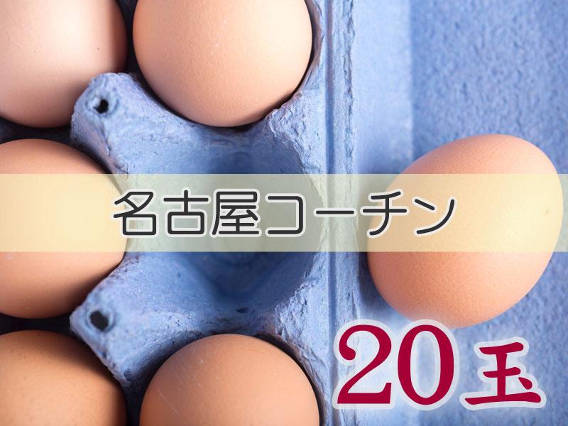 <p>【商品名】&nbsp;たまごづくし 名古屋コーチン 20玉</p><p>【品番】&nbsp;C-①</p><p>【商品内容】&nbsp;名古屋コーチン 20玉</p><p><br></p><p>普段使い、贈答用に</p><p>『スーパーなどで売られている卵と比べたら高価ですが、食べたらわかります!!』</p><p><br>  名古屋コーチンの地養卵は美しい桜色をした卵殻が特徴で、卵はやや小ぶりですが、卵黄の色は濃く、舌触りは滑らかで味は濃厚でコクのある美味しさがあります。</p>