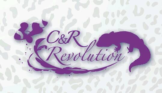 C&R Revolution