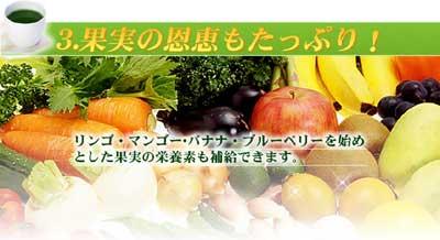 りんご・マンゴー・バナナ・ブルーベリー …… おいしい贅沢青汁