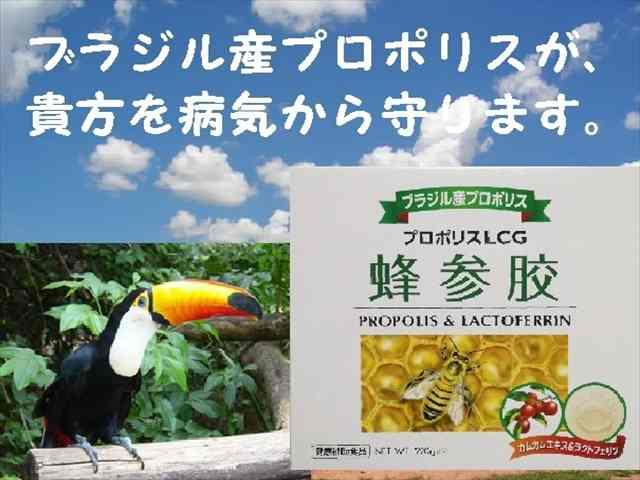 """<font style=""""background-color: rgb(255, 255, 102);""""><font color=""""#ff0000"""" size=""""3"""">プロポリスは、ローヤルゼリーやハチミツとともに植物の芽や樹液からミツバチが作り出した産物で、健康の維持に大切なカルシウム、マグネシウム、鉄などのミネラルや、数種類のフラボノイドを含んだ食品です。<br> <br>『ニュープロポリスEX-G』は、ブラジル原産の良質なプロポリスからエキスを抽出し、同じくブラジル原産のパフィアエキス(ブラジル人参)や天然ビタミンCの宝庫であるカムカム末を加え特徴のある製品に仕上げました。ご家族揃っての日々の健康に是非お役立てください。<br>&nbsp;<br></font><br></font><font color=""""blue"""">※こちらもご覧ください※<br></font>→<a href=""""https://store.shopping.yahoo.co.jp/kokoro-shop/"""">クオーレこころshop</a><br><br><br><br>"""