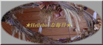 blog☆Hellebo~な毎日☆