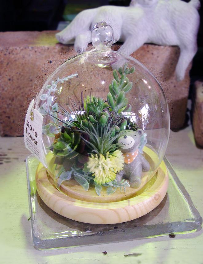 おしゃれなドームガラスの多肉植物アート
