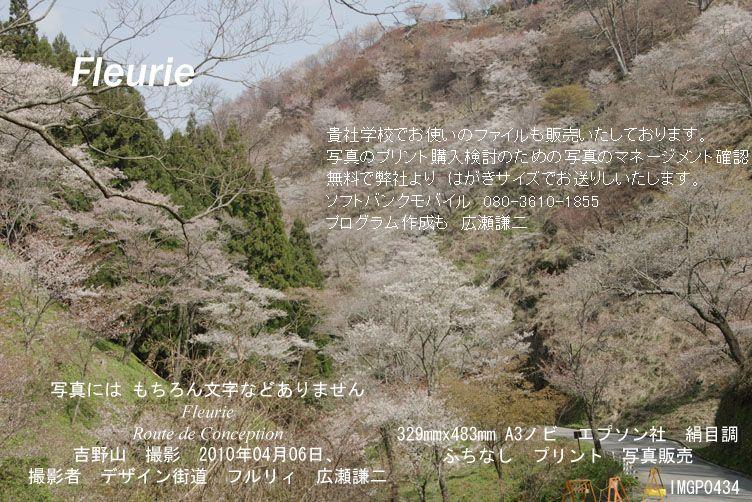 "<a href=""http://www.geocities.jp/xbcwx902/2010-haru-yoshino/2010-04-06/IMGP0434.jpg"">拡大表示&nbsp;</a><div><a href=""http://fleurie.cart.fc2.com/?ca=32"" style=""font-size: medium;""><span style=""font-size: 13.3333px;"">この写真 額縁 A3ノビ </span><span style=""font-size: 10pt;"">を購入ここから可</span></a><br><br></div>"