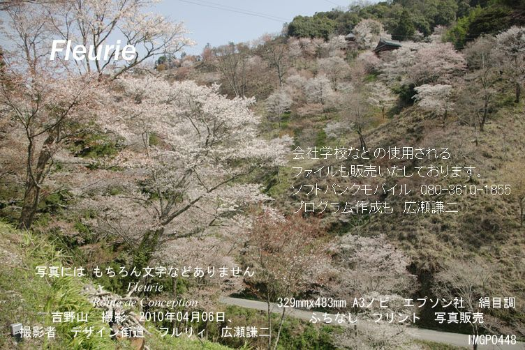 "<a href=""http://www.geocities.jp/xbcwx902/2010-haru-yoshino/2010-04-06/IMGP0448.jpg"">拡大表示</a><div><a href=""http://fleurie.cart.fc2.com/?ca=32"" style=""font-size: medium;""><span style=""font-size: 13.3333px;"">この写真 額縁 A3ノビ </span><span style=""font-size: 10pt;"">を購入ここから可</span></a><br><br></div>"