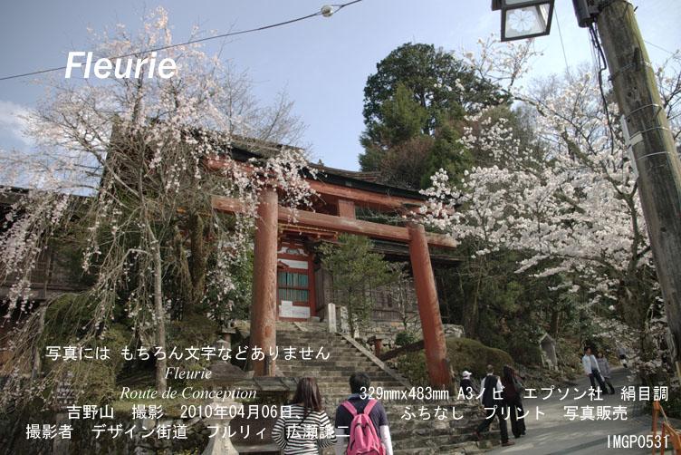 "<a href=""http://www.geocities.jp/xbcwx902/2010-haru-yoshino/2010-04-06/IMGP0531.jpg"">拡大表示</a><div><a href=""http://fleurie.cart.fc2.com/?ca=32"" style=""font-size: medium;""><span style=""font-size: 13.3333px;"">この写真 額縁 A3ノビ </span><span style=""font-size: 10pt;"">を購入ここから可</span></a><br><br></div>"