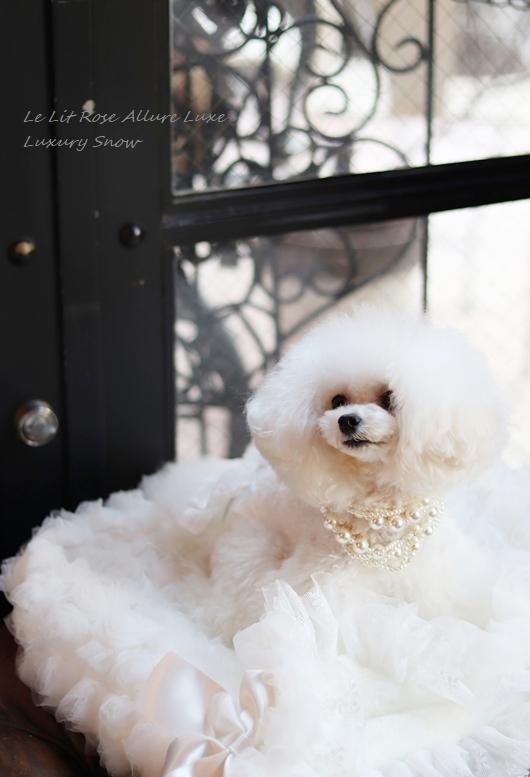 ☆Luxury Snow(ラグジュアリースノー)☆ 透け感のあるホワイトチュールが華やかで、美しいSnow(スノー)。これまでのSnowレースとは数段格上のため、お色名も変えています☆