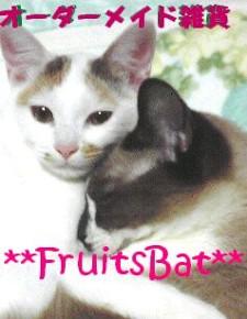 **FruitsBat**