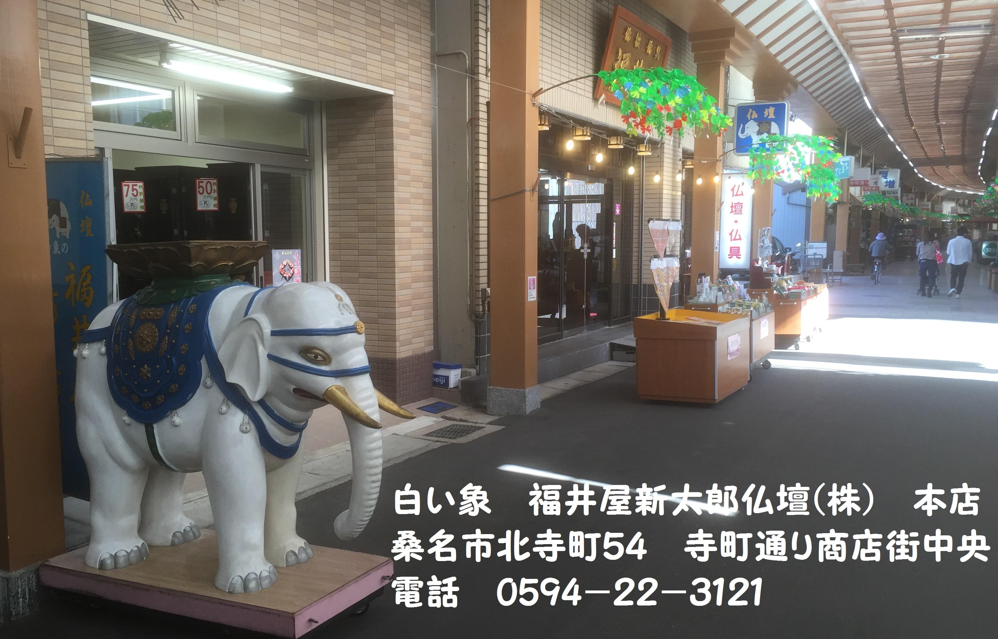 白い象 福井屋新太郎仏壇㈱