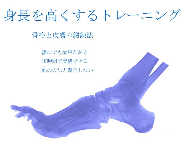 初段~参段