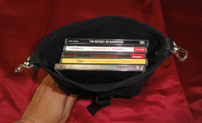 METEORSのCDも楽々5枚収納(METEORSじゃなくても入ります)