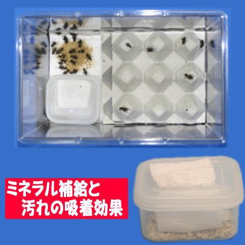 コオロギの給水器にも使われています