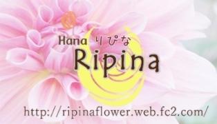 Hana Ripina~花りぴな~