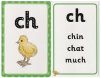Floppy's Phonics: Sounds and Letters: Flashcards