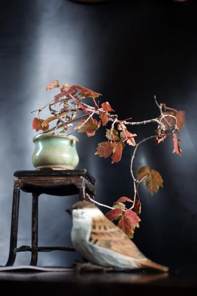 h28.10.12現在、落葉しています。