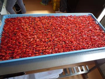 自社栽培の塩トマトを、自社加工所にて乾燥させた、こだわりの品です。