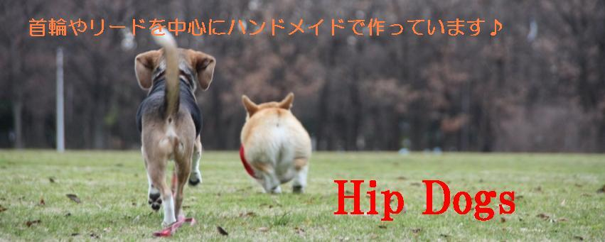 Hip Dogs