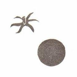 小粒トマト(小) 約1.6cm×1.5cm ヘタ約1.6cm×1.1cm
