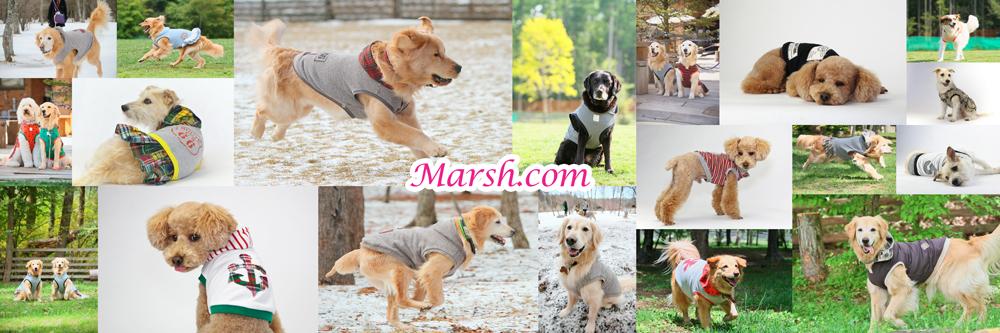 MARSH.COM