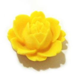 サイズ:直径20mm<br><br>色:黄色<br><br>内容量:1ヶ