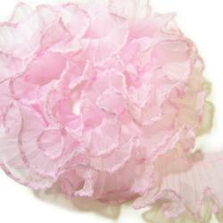 <p>サイズ:25mm幅<br><br>色:桜色 (色番:ピンク#2)<br><br>内容量:1m単位でカット</p><p><br></p>