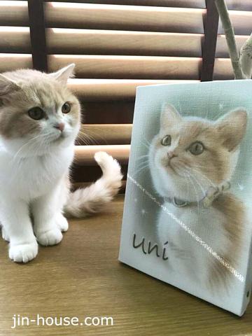 猫ちゃんとのツーショット(≧▽≦)ふんわり柔らかいタッチはエアブラシならでは!