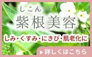 紫根(しこん)美容法HP