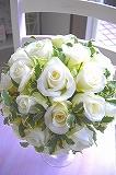 純白のバラだけを厳選使用した、ありそうでなかったブーケです。白バラだけで仕上げているので、その清楚さと清らかさは別格です★シンプルラインのドレスにも、ふんわりゴージャスドレスにも、しっくりピッタリ美しくキマリます。ガーデンウェディングはもちろん、厳格チャペルにも美しく映える逸品です。<br>