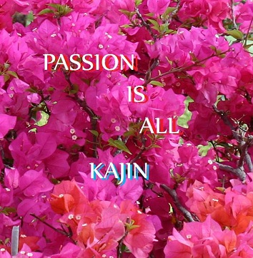 CDアルバム「PASSION IS ALL」(送料無料)