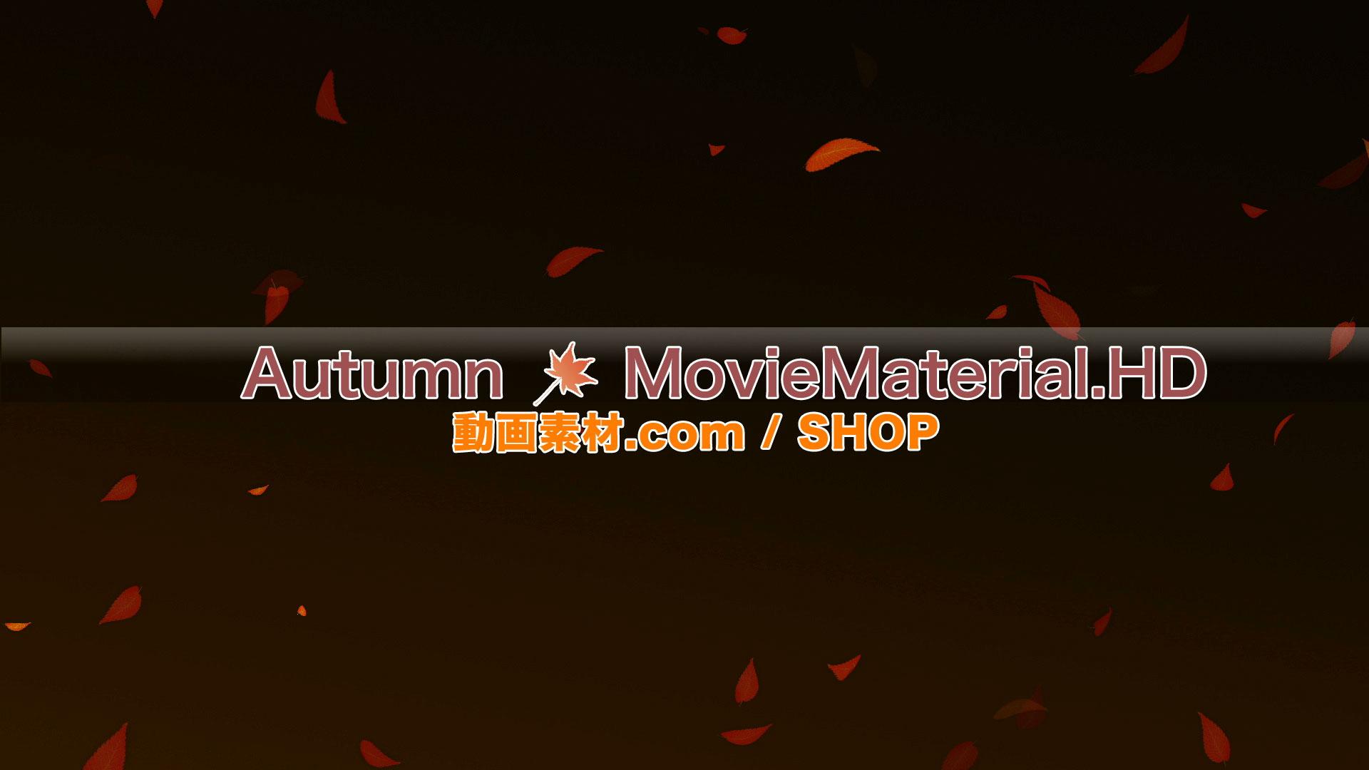 【Autumn MovieMaterial.HD】ハイビジョン 秋を題材にした実写映像素材とCG動画素材_image3