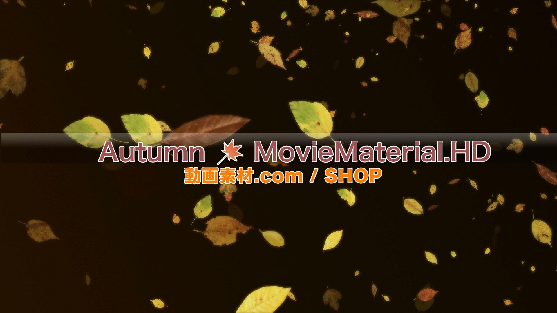 【Autumn MovieMaterial.HD】ハイビジョン 秋を題材にした実写映像素材とCG動画素材_image4