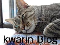 かりん舎ブログ