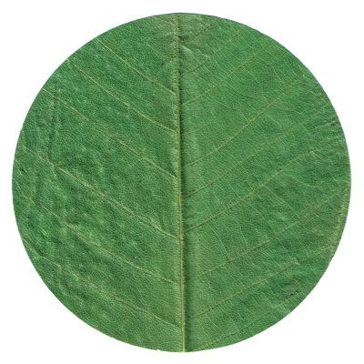 直径約13cm<br />原料:朴葉(中国産)<br />加工:日本<br />100枚/袋<br /><br />※天然素材を使用して<br /> いるため、色は均一<br /> ではありません。<br /><br /><br /><br />