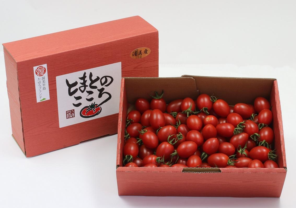 アイコトマト 1kg(60~65粒)