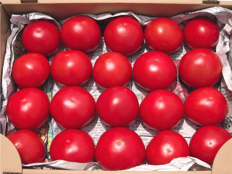 ぜいたくトマト(2kg)